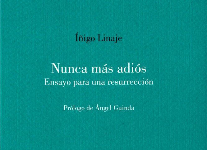 Presentación de libro: Iñigo Linaje